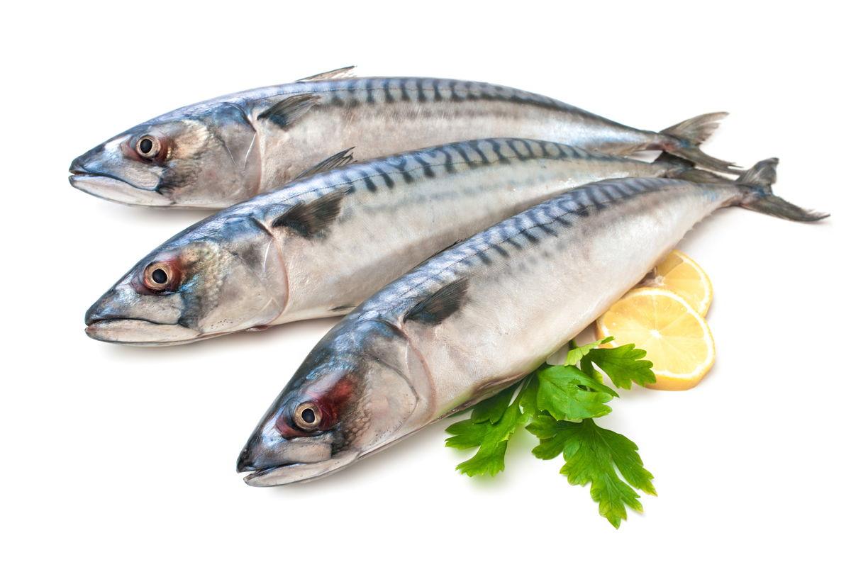 resep bakso ikan tenggiri